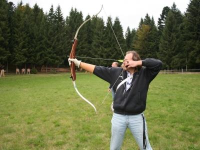 Robin Hood Cup